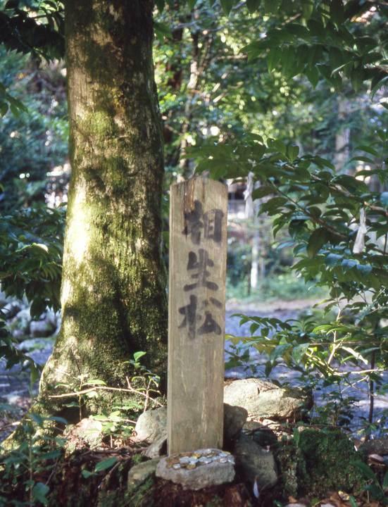 http://www.susa-jinja.jp/_assets/page_images/images/000/001/946/17de9925fd2c349d7f01b61475e1be73ec74bf79.jpg?1437992903